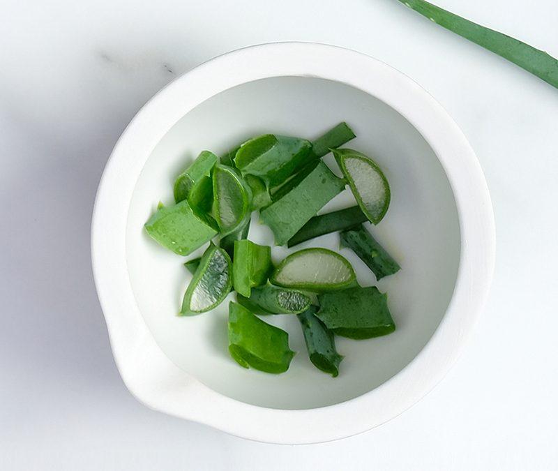 Aloe vera 4 extraits à faire soi-même